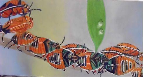 Insectos joya - oleo sobre lienzo - 20 x 40 cm #Artwork #drawing #painting