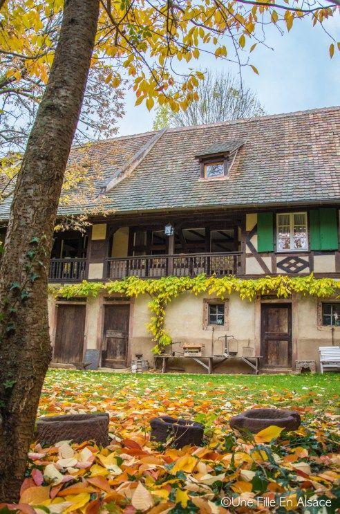 Chambres D Hotes Unter Der Linde Nordheim Chambre Nuit En Amoureux Et Vin Alsace