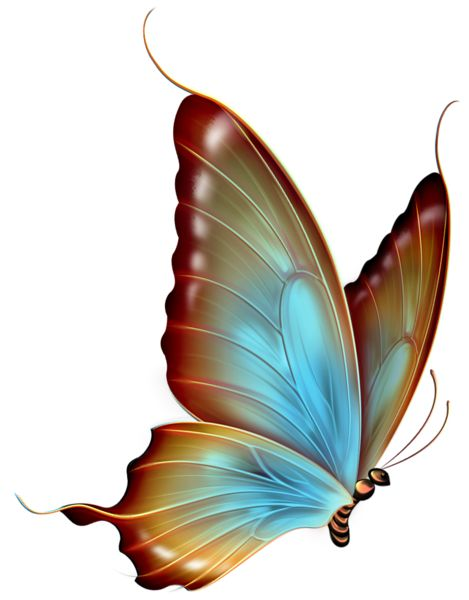 Brown and Blue Transparent Butterfly Clipart: