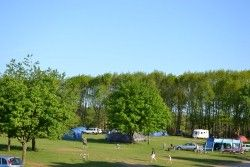 Forest Camping - http://local.mumsnet.com/suffolk/caravan-and-camp-sites/141893-forest-camping
