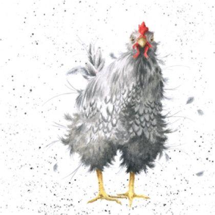 CS036 - 'Curious Hen'