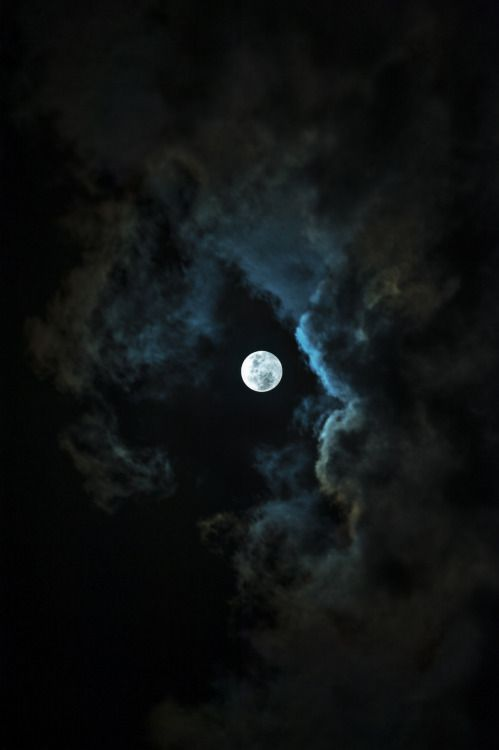 Wolf Moon by miguel aviles