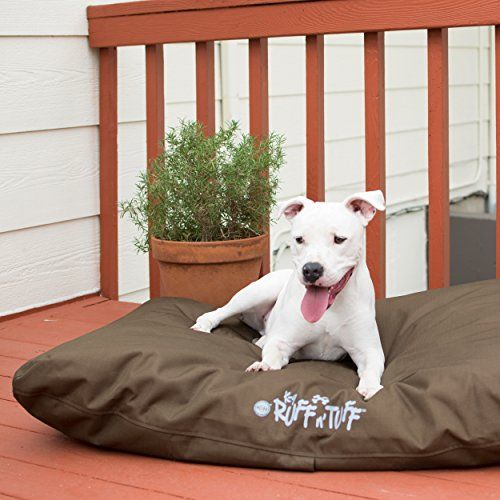 10 Indestructible Beds For Chew Tastic Canines Indestructable Dog Bed Dog Bed Dog Mom