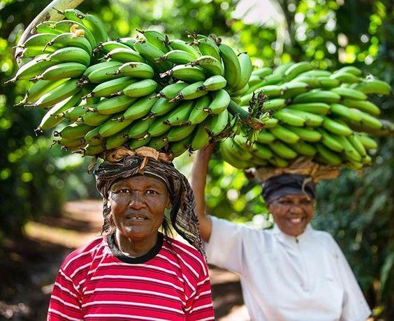 """Na Tanzânia o """"arroz e feijão"""" é a banana. É sopa de banana, banana com carne, banana frita, com molho, doce, salgada... Acompanhei as vidas que fazem tudo isso acontecer, para o Projeto Evoé. Essa é uma foto desse ensaio, tirada na vila de Mwika, interior da Tanzânia."""