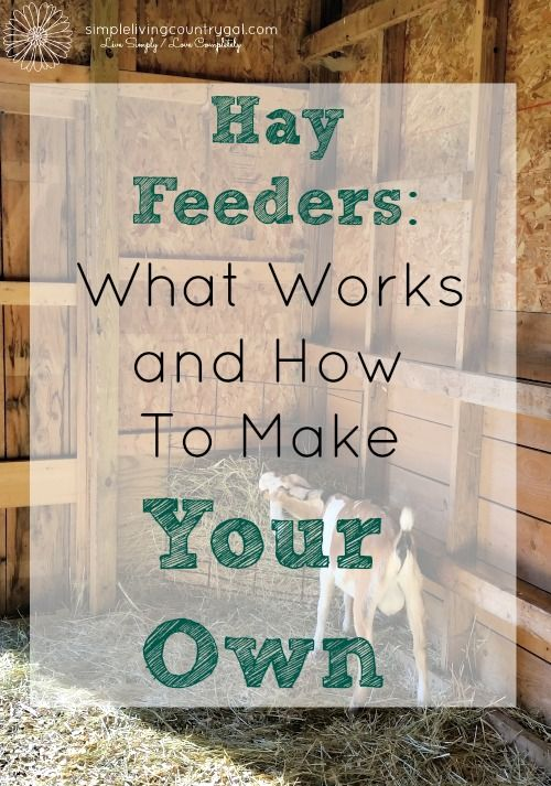 There are a lot of feeder options out there, here is a list of what I have tried and made.  What works and what doesn't.