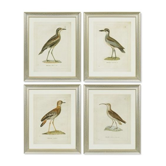 Coastal Bird Artwork ($170) ❤ liked on Polyvore featuring home, home decor, wall art, art, decor, ocean home decor, bird wall art, ocean wall art, coastal wall art and coastal home decor