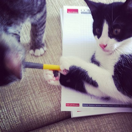 Learning to write, phase two: how to hold a pen, NOT with teeth - @nesuss- #webstagram