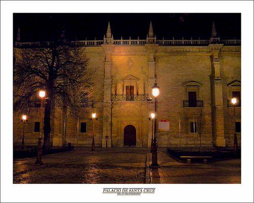 PALACIO DE SANTA CRUZ  El Palacio de Santa Cruz de Valladolid es la primera muestra de arte renacentista en España. Antigua sede del Colegio Mayor Santa Cruz, en la actualidad, el palacio es la sede del rectorado de la Universidad de Valladolid,