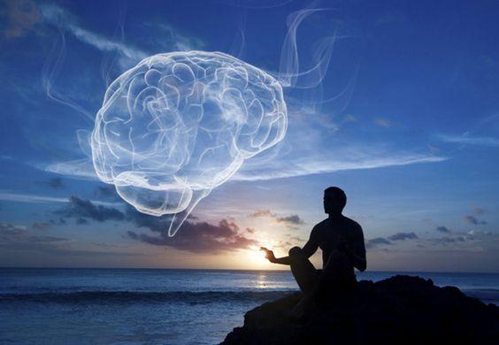 Harvard Unveils MRI Study Proving Meditation Literally Rebuilds The Brain's Gray Matter In 8 Weeks