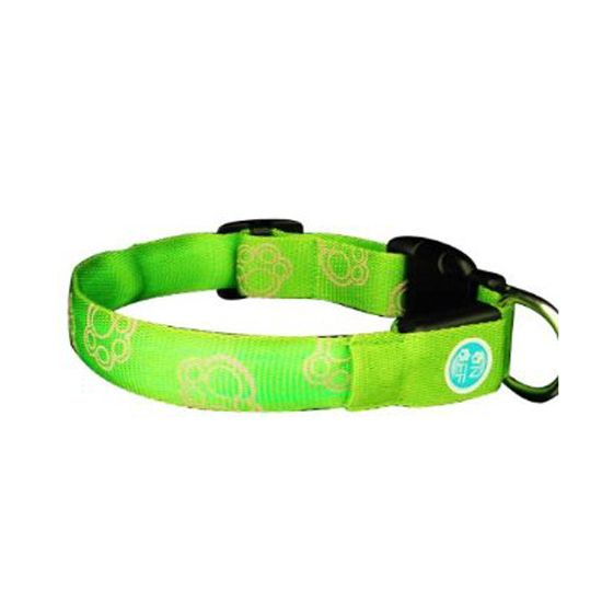 Smarthome.com: Lava Electronics LC-9 G M QPets LED Safety Dog Collar for Medium Dogs, Green