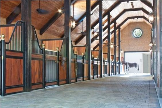 Looks like a very stress-free stable for horses. Open.