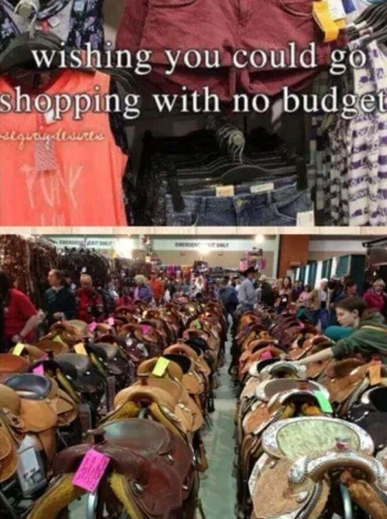 Equestrian probs.... tack stores! The one issue us horse lovers have....... The stuff we want is sooo expensive lol