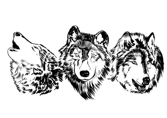 Wolves  by ObalofSerbia  Frend asked me to design for him a tatto so this a peace of it ,done in SAI