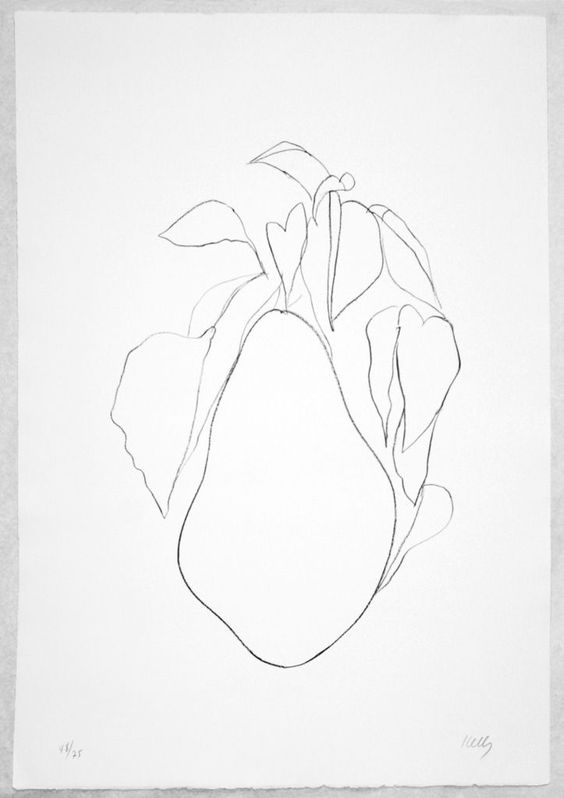 Contour Line Drawing Of Fruit : Ellsworth kelly pears and drawings on pinterest
