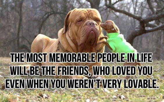 lovable friends