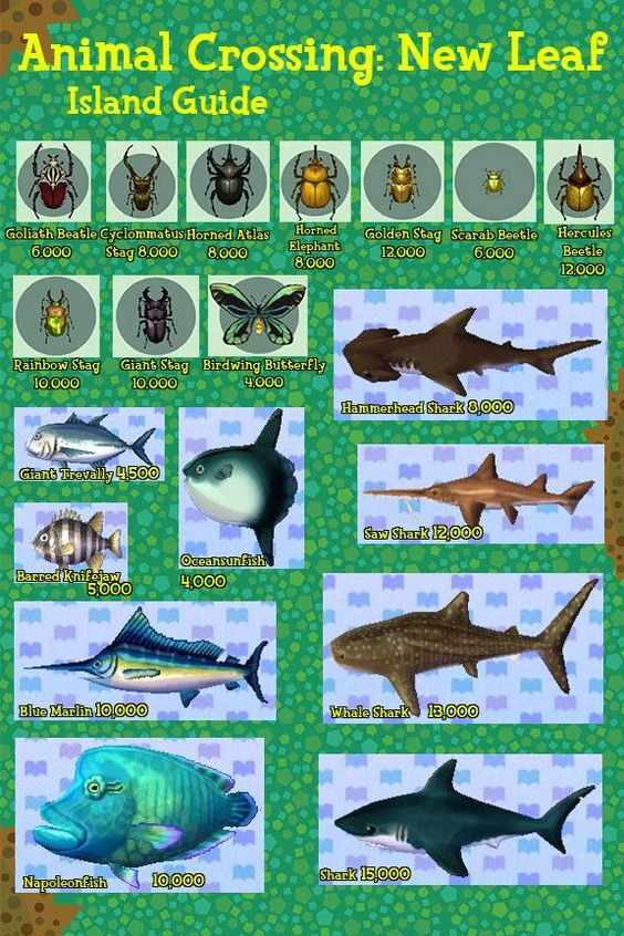 Animal crossing new leaf fish and bugs guide animal for Acnl fish guide