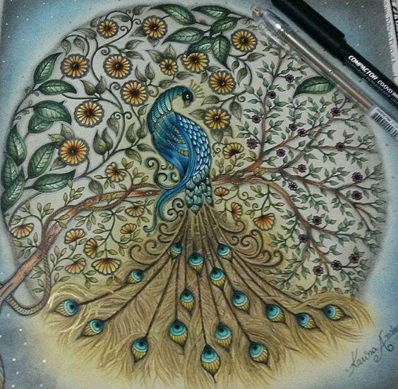 Peacock Secret Garden Pavo Jardim Secreto Johanna Basford