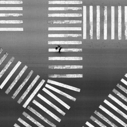 two-color:  пешеход (by:Алексей Бедный)