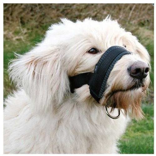 Trixie Kaganiec Nylonowy Regulowany Dla Psa Xxl With Images Dog Muzzle Pet Dogs Dogs
