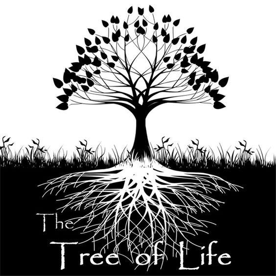 Christmas Tree Life Extender: Tree Of Life Symbol - Bing Images