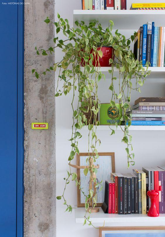 Estruturas de concreto à mostra e prateleiras brancas que abrigam livros e objetos de decoração.: