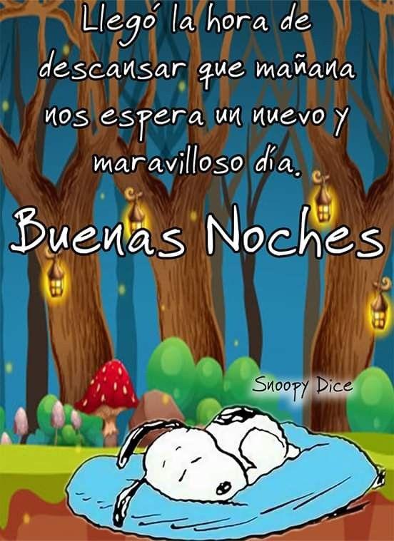 Pin De Gloria Ines En Snoopy Fotos Buenas Noches Buenas Noches Gratis Buenas Noches Cristiana