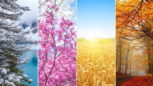 Picture Of 4 Seasons Wallpaper In 4k Resolution Summer