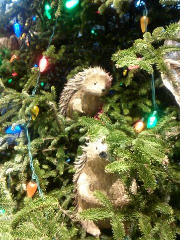 Christmas Tree in Gaitlinburg, TN <3