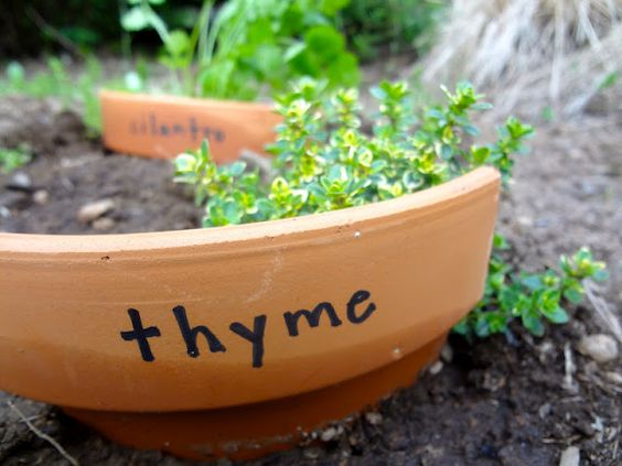Herb garden using pottery shards.  LOVE. from www.hardlyhousewives.com