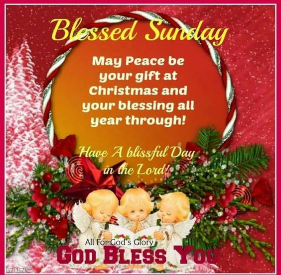 Sunday Blessings to you all.Have a nice day.Take care ! xxx