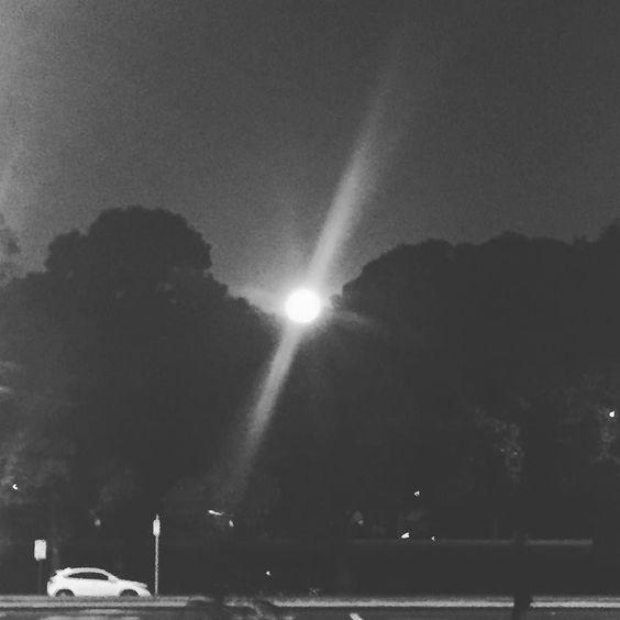 #moonlight #melbourne