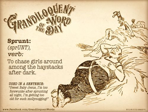 "https://www.patreon.com/Grandiloquent_Word NOT George Carlin's definition of Sprunt... Sprunt (sprUNT) Verb: -To chase girls around among the haystacks after dark. While there are other meanings for the word ""sprunt"", this particular definition comes specifically from Roxburgh Scotland. It is possibly of Scandinavian origin; akin to Swedish dialect ""sprunta"" to jump, ""sprinta"" to jump, hop."