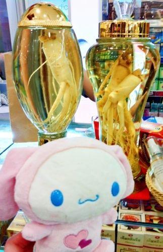 Mission completes. Alien captured!!???  Sanrio Cinnamoroll