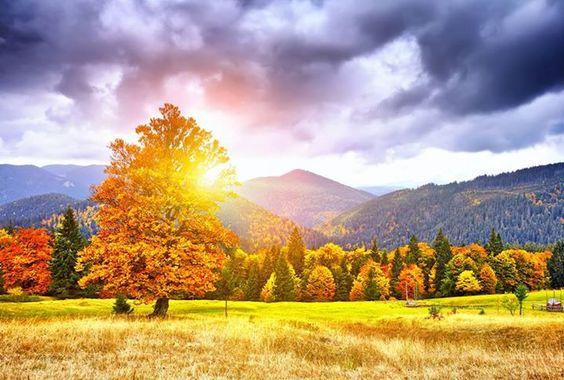 Gotta love Autumn