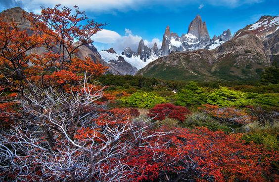 FITZ ROY IN AUTUMN by Ignacio Palacios