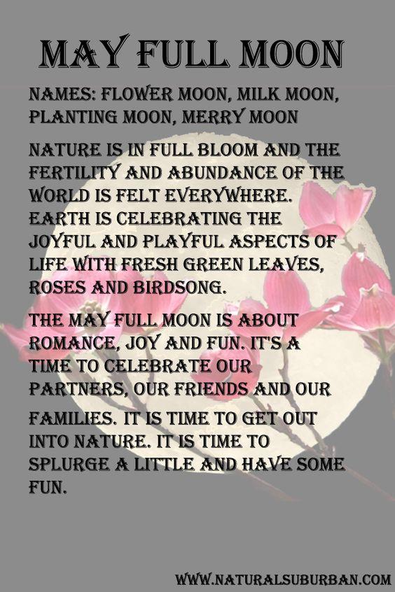 Mყรtєгเ๏ยร )○( M๏๏ภ )○( May ✦ Full Moon