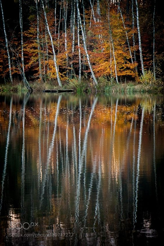 reflections by PiotrWytrazek. Please Like http://fb.me/go4photos and Follow @go4fotos Thank You. :-)