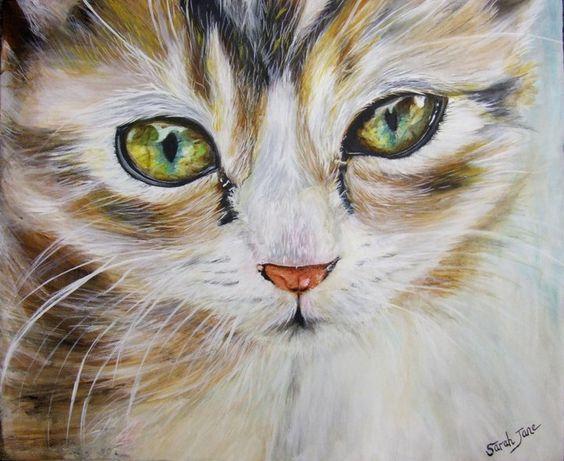 Cat Whisper by Sugarandspice56.deviantart.com on @deviantART