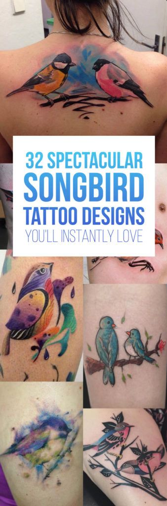 32 Spectacular Songbird Tattoos You'll Instantly Love