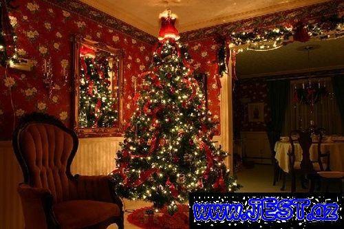 Yeni Ilə Səkilləri Axtaranlar Ucun Yolka Səkilləri Saxta Baba Səkilləri Və S Sizlər Ucun P Elegant Christmas Trees Holiday Christmas Tree Live Christmas Trees