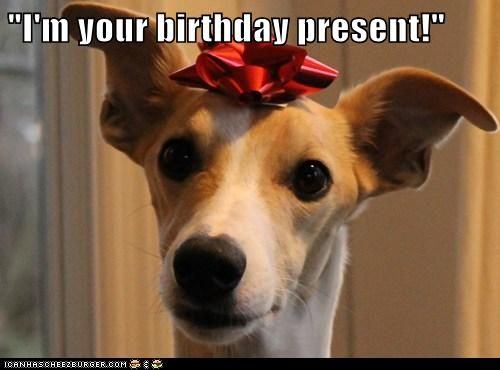 Lola, I'm sending you a boyfriend for your BIRTHDAY*!!!*!!!