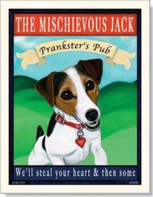 Jack Russell Crazy