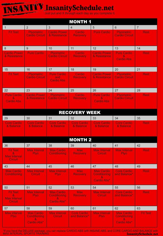 Download Pdf  Insanity Workout Schedule And Insanity Workout