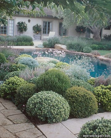 This will be like my garden one day especially with the pool behind it.