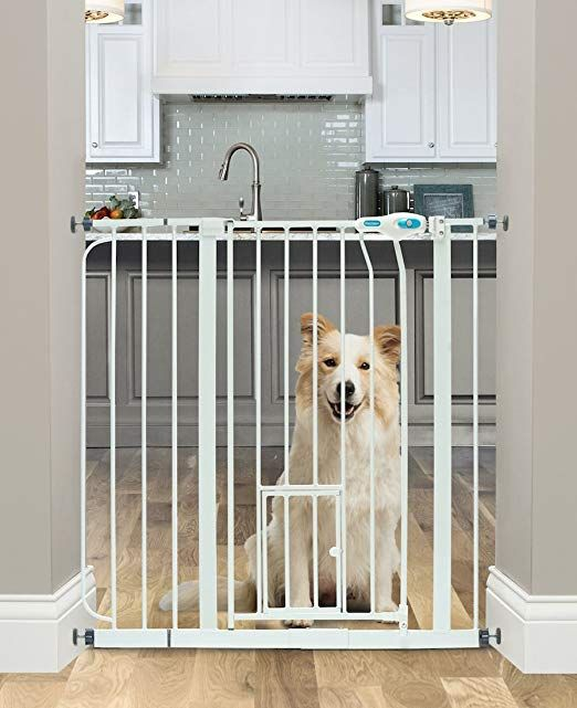 Pin By Kristalin Davis On For The Love Of A Dog Pet Gate Indoor