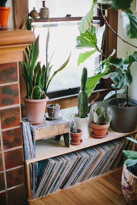 Love the vinyl storage and the terracotta plant pots make this set up look so rustic and boho. House plants and records are always a winner!