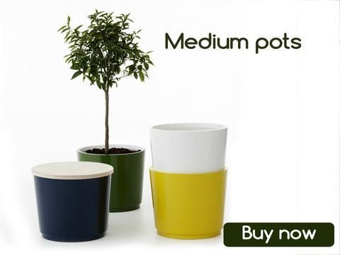 Pots And Planters Online In India Plant Pots For Sale Trustbasket Plant Pots For Sale Vertical Garden Pots Planter Pots