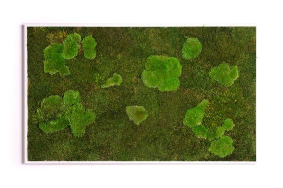 Moosbild aus natürlichem, konservierten Moos ohne Pflegeaufwand! |Deko-Salon Online Shop