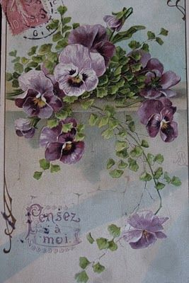 Love pansies and purples!!: Vintage Postcards, Pansy Flower, Vintage Floral, Vintage French, Vintage Pansies, Purple Pansies, Favorite Flower, Vintage Cards