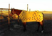 PHT Magnetics - mesh blanket.